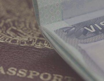 Как оформить визу в 2020 году для СПб и ЛО